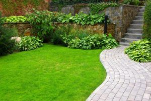 Gardening Services in East London